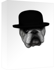 Clockwork Bulldog