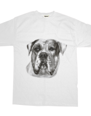 American Bulldog Drawing