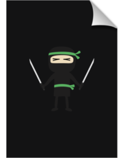 ninja with weapon