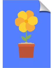 Yellow flower in the pot