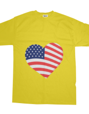 Heart in Stars and Stripes