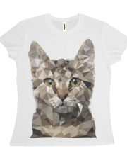Polygonal cat