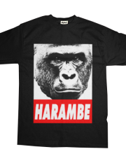Harambe the Gorilla.