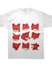 Foxes - Any colour!