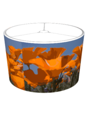 Poppies and Blue Sky Lampshade
