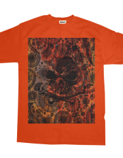 Angry Skull Emerging from Grunge Paisley and Fire