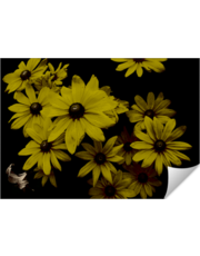 Yellow Daisies Old World Painting Look